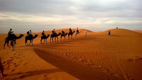 The Route of Santiago in The Alchemist: Spain, Morocco