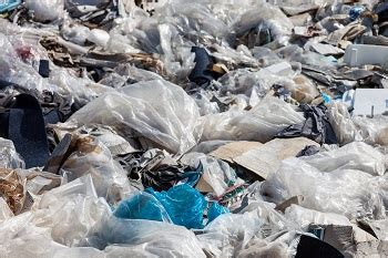 Which Countries Have Banned Plastic Bags? | Study