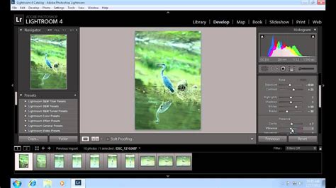 How to Copy Lightroom Settings to Another Photo - YouTube