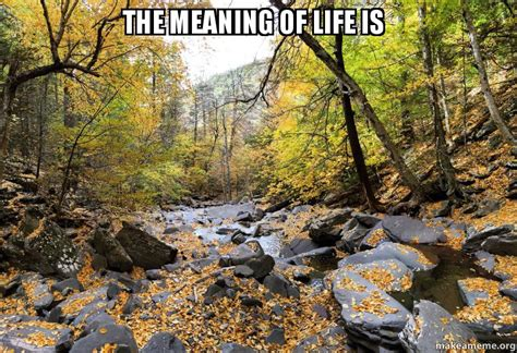 The meaning of life is   Make a Meme