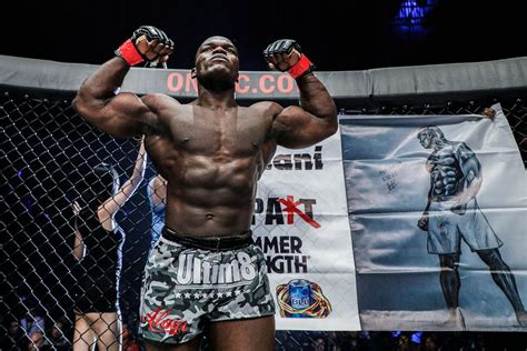 Would Alain Ngalani fight Cameroonian 'brother' Francis