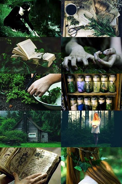 """call-me-winter-soldier: """" Green Witch aesthetic (more"""