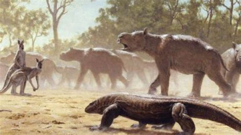 Australia's Ancient Giant Wombats Made Long Migrations